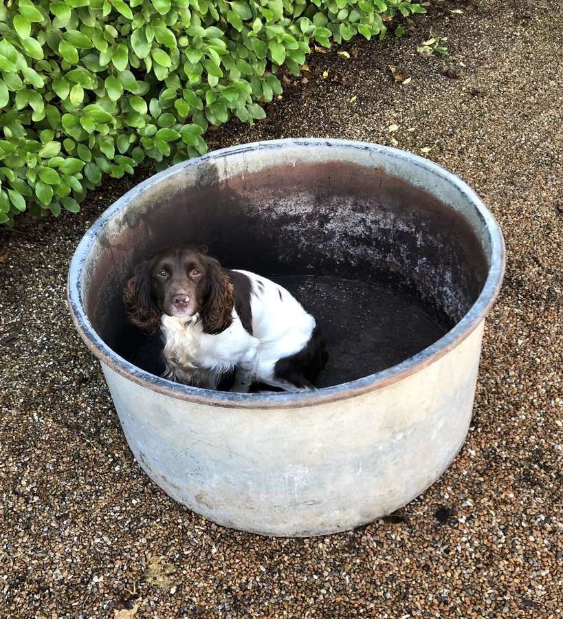 A Large Circular Cistern